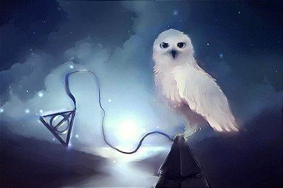 Quadro Harry Potter - Coruja do Harry 4