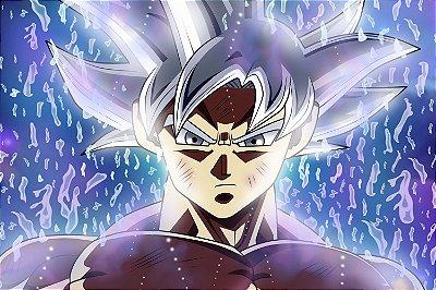 Quadro Dragon Ball - Goku Instinto Superior Dominado 2