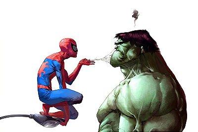 Quadro Homem Aranha - Hulk Desenho
