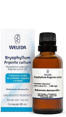 BRYOPHYLLUM ARGENTO CULTUM | Auxiliar no tratamento de insônia