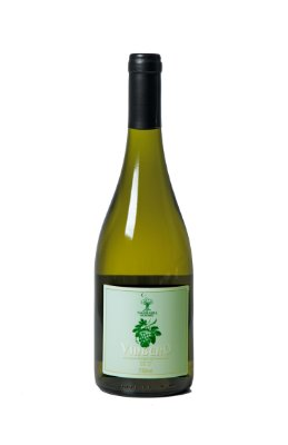 Vinbero - Pyment (hidromel com vinho chardonnay) Ed. Especial