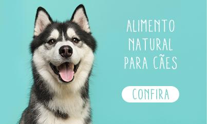 Alimento natural para cães
