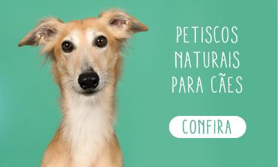 Petiscos naturais para cães