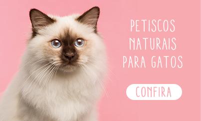 Petiscos naturais para gatos