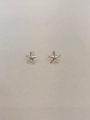 Brinco Pequeno Estrela Do Mar