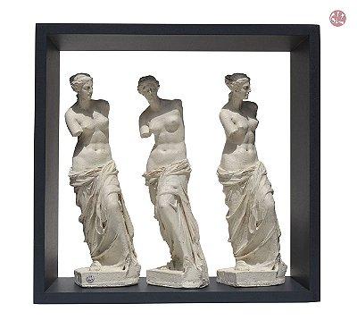 Vênus na Caixa - Trio Branco