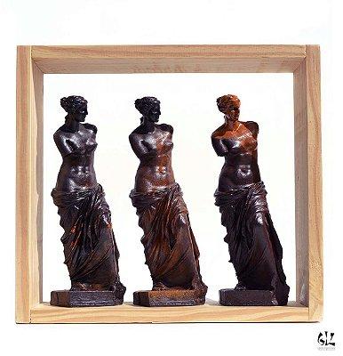 Vênus na Caixa - Trio