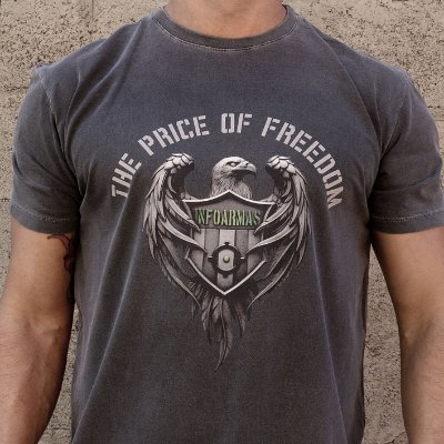 Camiseta Estonada The Price Of Freedom Chumbo
