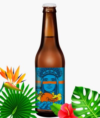 Dama Catharina Sour Fruit Tangerina e Gengibre 355 ml