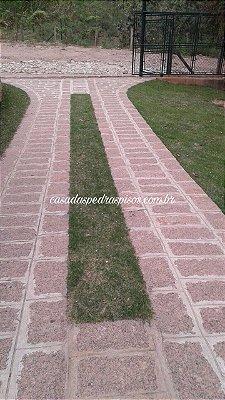 Folheta (paralelepípedo) granito rosado