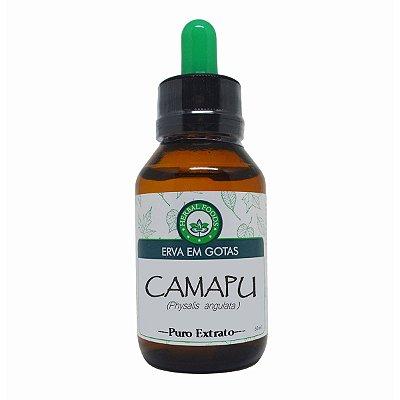 Camapu (Physalis angulata) - Extrato 60ml