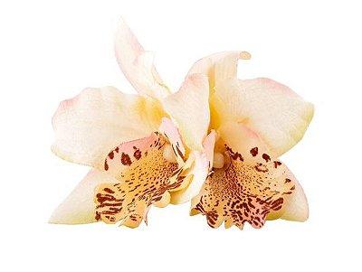 Porta Guardanapo Orquídea Oriental Off White