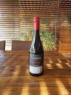 Falernia Reserva Pinot Noir 2018