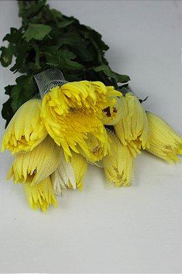 Anastácia  amarela - maço com 10 hastes