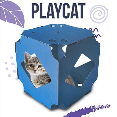 playcat