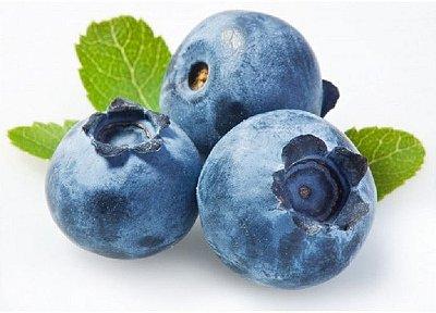 Mirtilo Ou Blueberry - Lindas Mudas