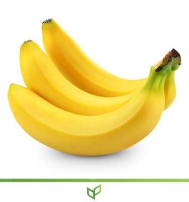 Banana BRS Platina - Prata Anã - Lindas Mudas