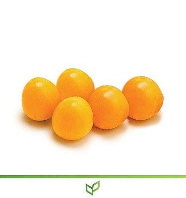 Fruta do Sabiá - Lindas Mudas