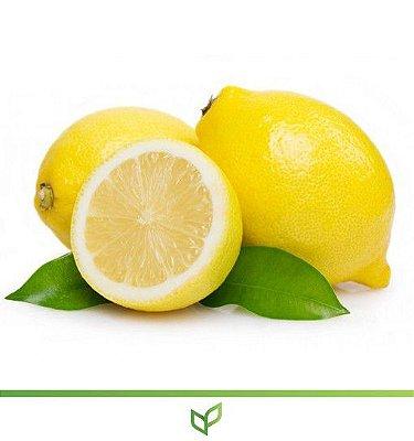 Limão Siciliano - Lindas Mudas Enxertadas