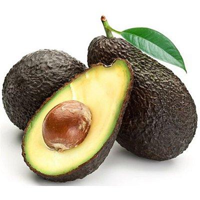 Abacate Avocado Hass Enxertado -  Lindas mudas