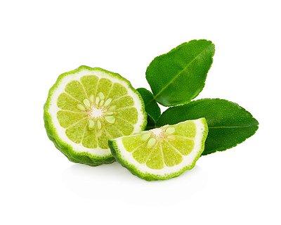 Limão Kaffir - Lindas Mudas