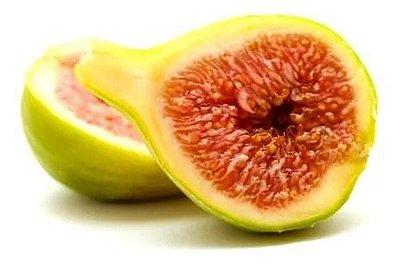 Muda de Figo Pingo de Mel ou Figo Branco - Já produz - Lindas Mudas
