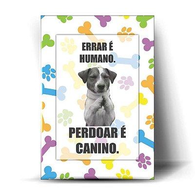 Errar é Humano, Perdoar é Canino