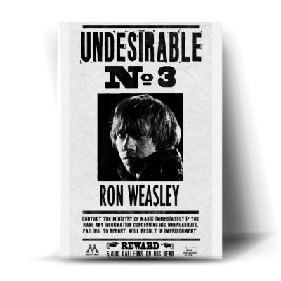 Undesirable N°3