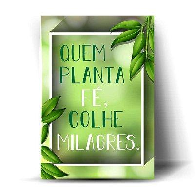 Quem planta fé, colhe milagres