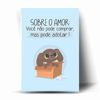 Sobre o Amor: Você não pode comprar,mas pode adotar!