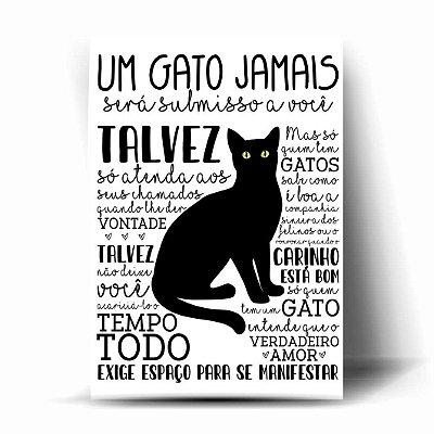 Um Gato Jamais será submisso a você