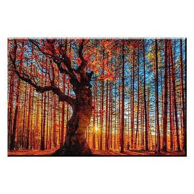 Quadro Paisagem Floresta Tela Decorativa