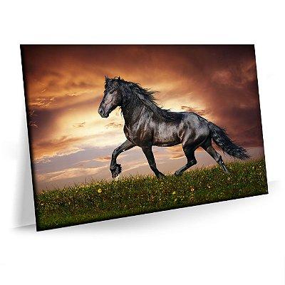 Quadro Cavalo Negro Sala Animais Tela Decorativa