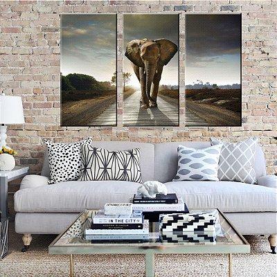 Quadro Elefante Conjunto 3 Telas em Canvas