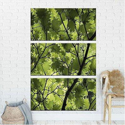 Quadro Natureza Folhas Herbal 3 Telas Decorativa