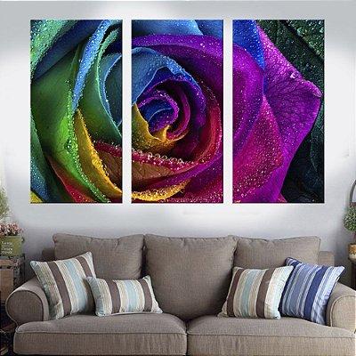 Quadro Natureza Rosa Colorida Conjunto 3 Telas Decorativas