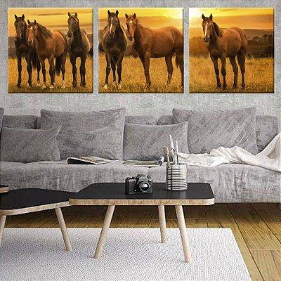 Conjunto 3 Telas Decorativas Cavalos Selvagens