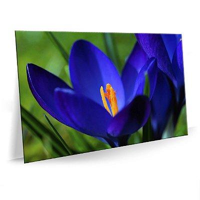 Quadro Flor Azul Tela Decorativa