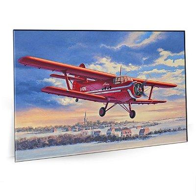 Quadro Aviao Air Plane Tela Decorativa