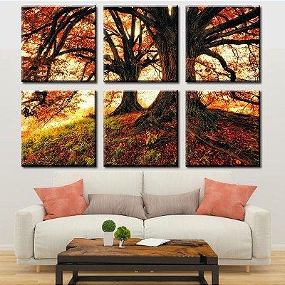 Composição de 6 Quadros Decorativos Natureza Arvores