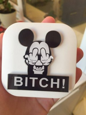 Case Mickey