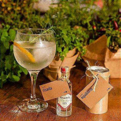 Kit Gin Simples