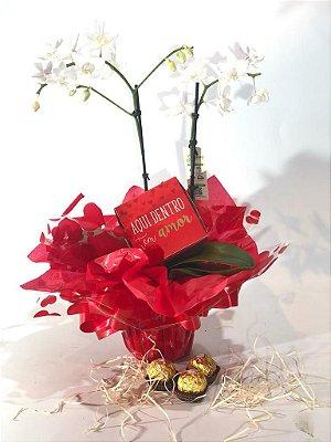 Presente de Páscoa - Mini orquídea com 3 ferreiros mais caixinha