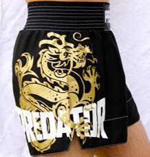 Short de Muay Thai - Predator MMA Drago V3 - Preto