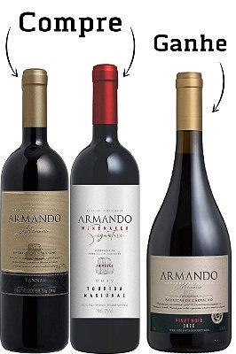 Kit Peterlongo Armando 2