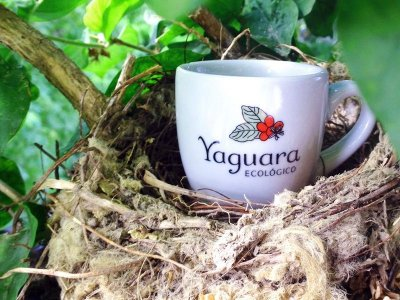 Xícara Yaguara® para Café Espresso