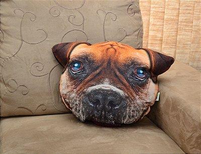 Almofada Pet Boxer