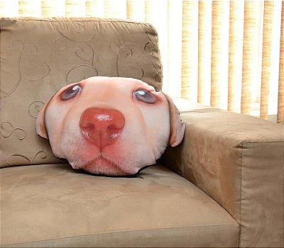 Almofada Pet Labrador