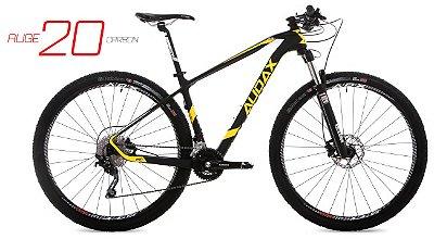 Bicicleta  Audax Auge 20 Carbon aro 29