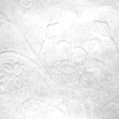 Toalha Rendada Papel Mago (Doilies) relevo flores (45x31) c/100 unids